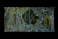 Pressed Leaf 015